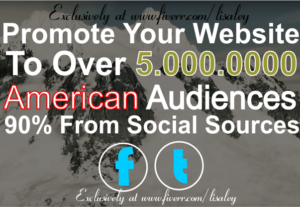 I Will Promote Your Website Or Anything To Million USA Fans And Followers