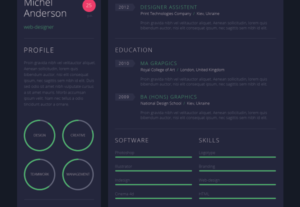 I Will Design A Killer Infographic Resume Unique CV Design